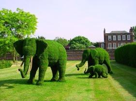 animals-topiary