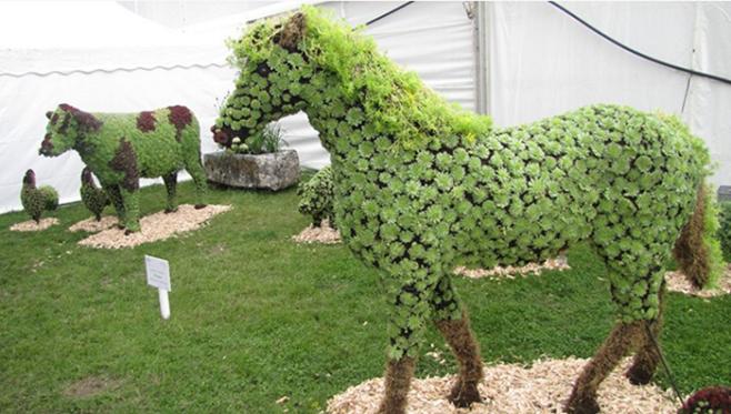 custom horse topiary(1)